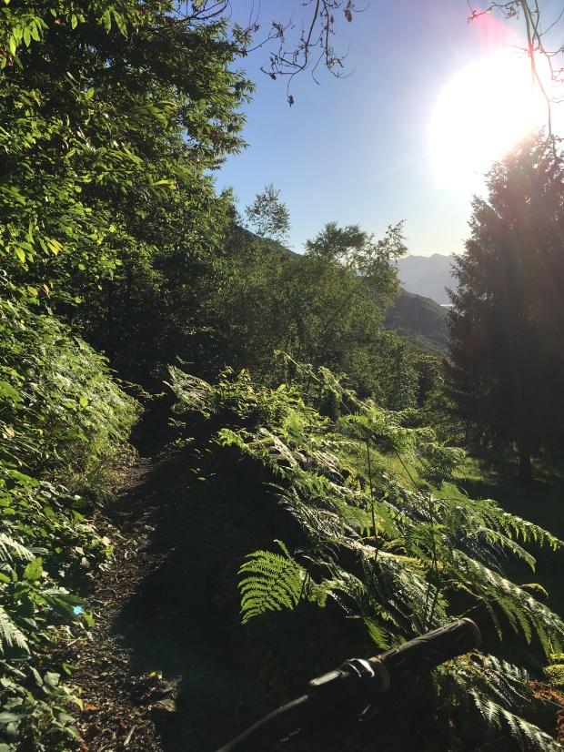 Come in Costa Rica, ma in Val Tellina
