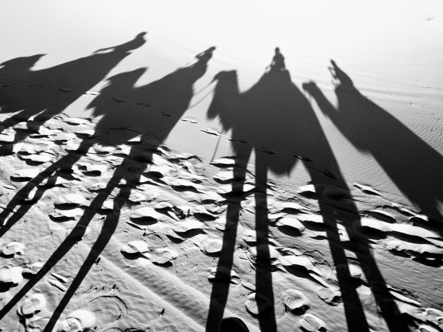 Cammelli deserto Merzouga